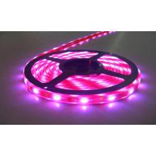 LED Light SMD 3528 RGB LED Strip Light
