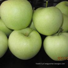 Exportação Padrão Chinês Fresco Golden Apple
