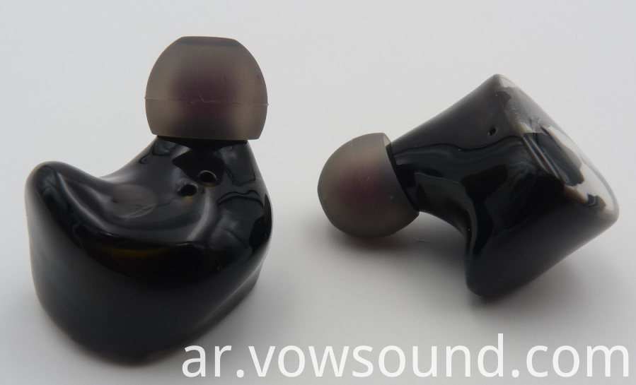Dual Driver Wireless Earbuds