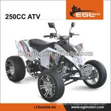 ЕЭС дорога правовой четырехъядерных 250cc ATV