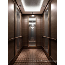 SGS Approved Passenger Elevator for Luxurious Hotel