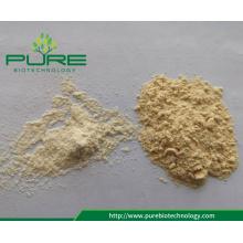 Factory Supply All Grade Dehydrated Vitlökpulver