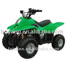 populaires quad 110cc