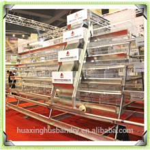 layer cages of chicken coops