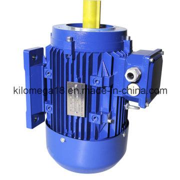 Три фазы электрического двигателя литого железа с сертификатом CE 10квт
