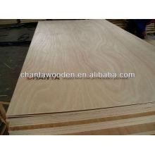 Contraplacado de bétula, núcleo de madeira para 15mm, 18mm