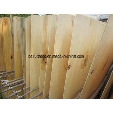 Pappel-Kern-Furnier für Sperrholz