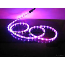 3528SMD Bande LED 110 / 230V Bande LED Lumière LED