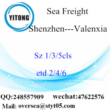 Shenzhen Port LCL Consolidation To Valenxia