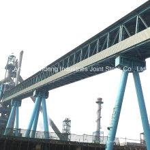Cema / DIN / ASTM / Sha Transportador de cinta con armadura de servicio pesado estándar