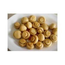2016 Китайский консервированный гриб