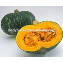 MPU09 Yuanhua profundo amarillo fresco híbrido semillas de calabaza dulce compañía