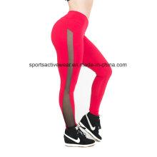 Nova chegada Tight Mulheres atacado Sportwear Yoga Yoga Calças