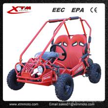 5.5HP 50cc/163cc Offroad niños Gas Buggy Mini