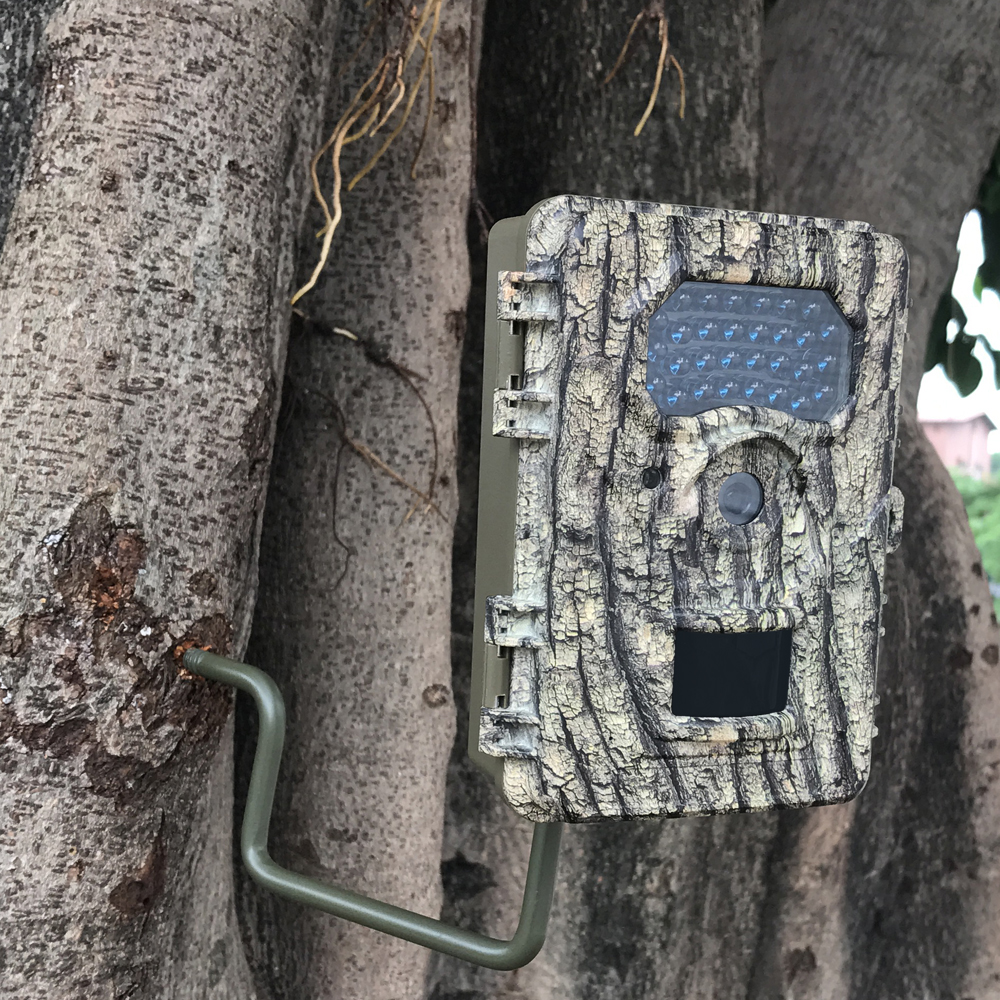 Wildlife Research Trap Camera
