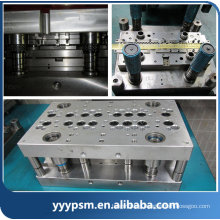 Blanks Punch/ Die and Tools Plastic Injection Mold Parts