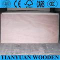 Bintangor Commercial Plywood