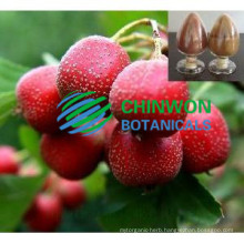 Factory Direct Supply Hawthorn Leaf Extract