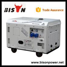 BISÔNIA China Zhejiang China gerador elétrico 220v, gerador de alternador 220v, 13 kva gerador diesel