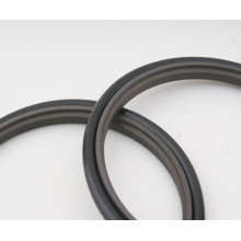 Teflon Sliding Rod Ring/Step Seal for Injection Moulding Machines