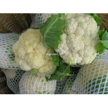 Китайская замороженная цветная капуста