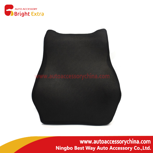 Seat Cushion For Back