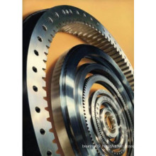 Detailed Technical Information for Replaceble Rotek Slewing Ring Bearing (A18-80E)