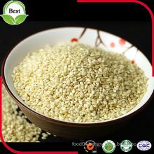 White Sesame Seeds for Oil