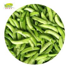 Bulk wholesale distribute IQF frozen sugar snap peas