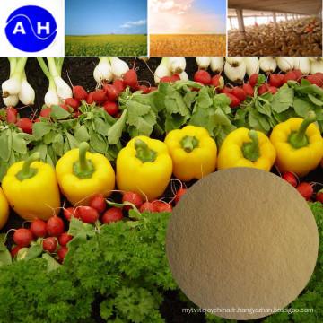 Engrais nutritif composé de chélate d'acides aminés de magnésium