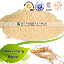 Panax Ginseng Wurzelpulver Extrakt