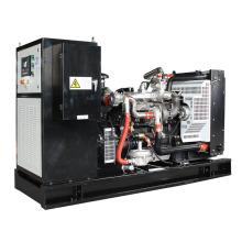 High quality 80kw biogas engine generator price