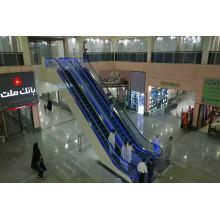 Indoor PLC Vvvf Escalator with Competitive Price