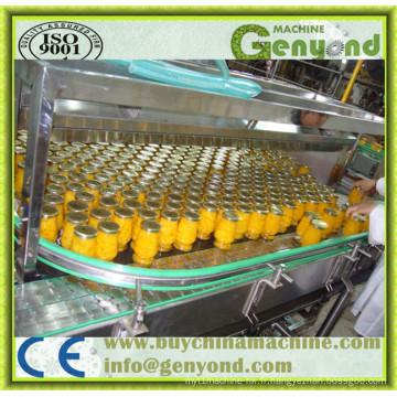 Ligne de production d'aliments en conserve entièrement automatique