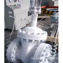 Klass 300 CF8 Gate valve