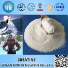 new products creatine powder bulk