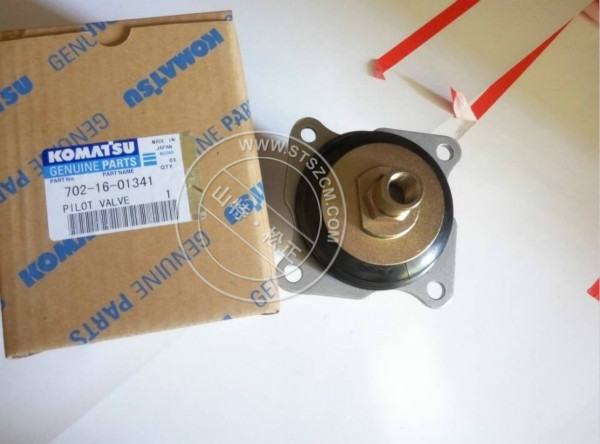 Valve 702-16-01341 With Seal