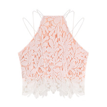 Ärmellose Hollow Out Lace Stickerei Crop Weste