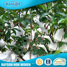 Popular Product Nonwoven Fruit Vegetable Protect Agricultural Covers
