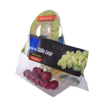 Topkwaliteit Custom Biodegrad Plastic Frozen Fruit Bag