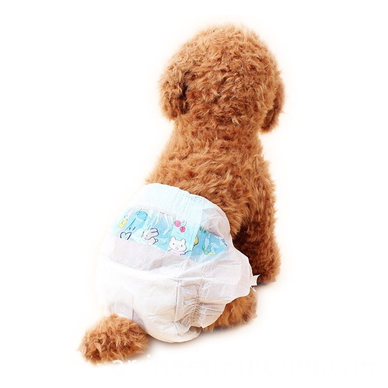 10pcs-set-Dog-Diapers-Urine-Shorts-Pet-cat-dog-Super-Water-absorbing-type-Dry-health-pants