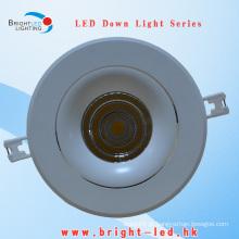 30W ajustável Beam ângulo LED Down Light