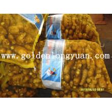 Gengibre fresco embalado em saco de malha 20 kg para o mercado paquistanês