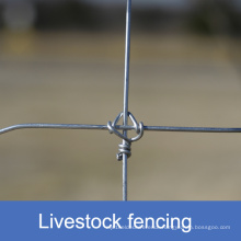 Fixed Knot Livestock Fencing