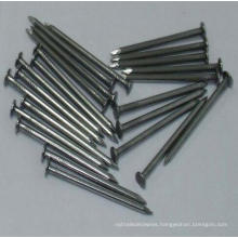 Top Quality Common Nail China Supplier