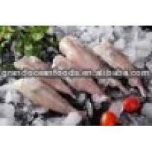 Frische Seeteufelschwanz Meeresfrüchte