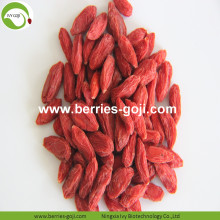 Fuente de la fábrica Fruit Low Sugar Diet Goji Berries
