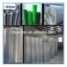 1/4 inch galvanized welded wire mesh / 304 stainless steel wire mesh