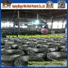 China Factory Supplying Grassland Field/Cattle Fence Panel