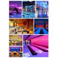 Equipo de Bowling Brunswick con Instalación (GSX)